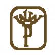 cpa logo (透明底)